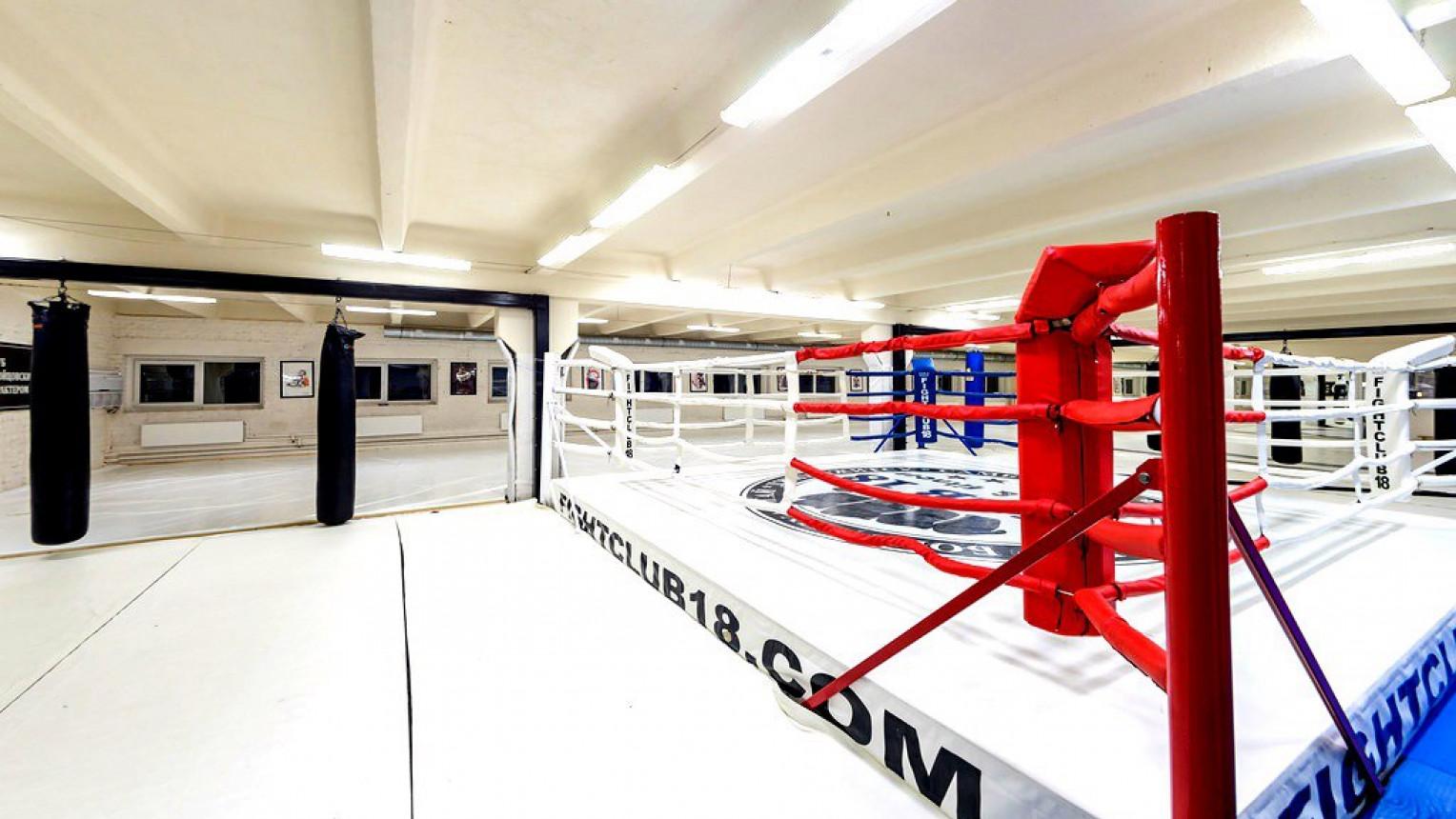 Мягкий зал №5 с рингом - фото №2